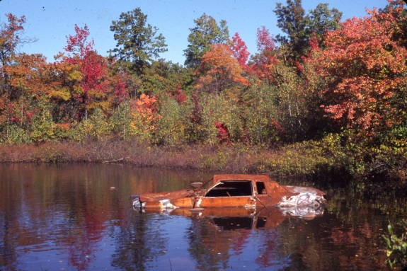 Photo: M. B. Gargiullo.Long Pond Park, S. I. NYC. with abandoned, burned car. (ca 2000).